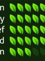 Kratom Pharmacy | Green Maeng Da - Strain Effects