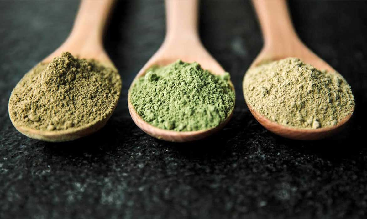 The Differences Between Kratom Strains: Red Vein, Green Vein, and White Vein